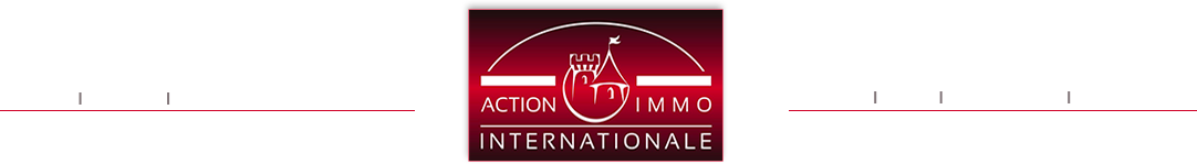 Logo Action Immo Internationale